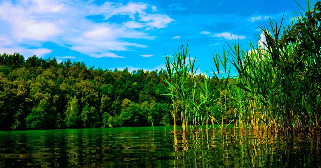 Green Lake #2